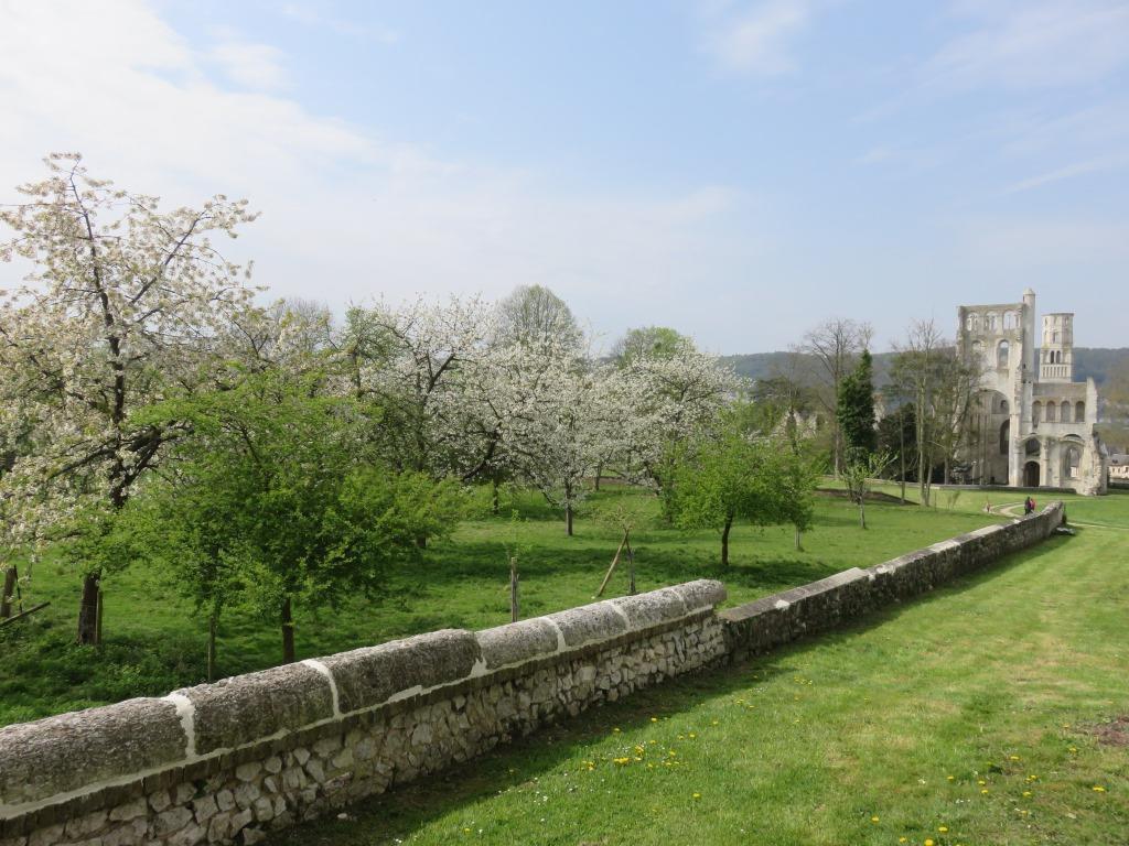 Abbaye de Jumièges Crédit Abbayes Normandes